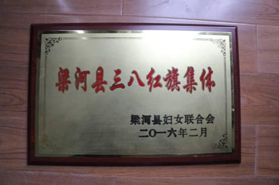 2016年梁河县三八红旗集体